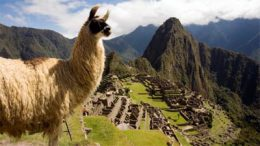 machu_picchu_accident